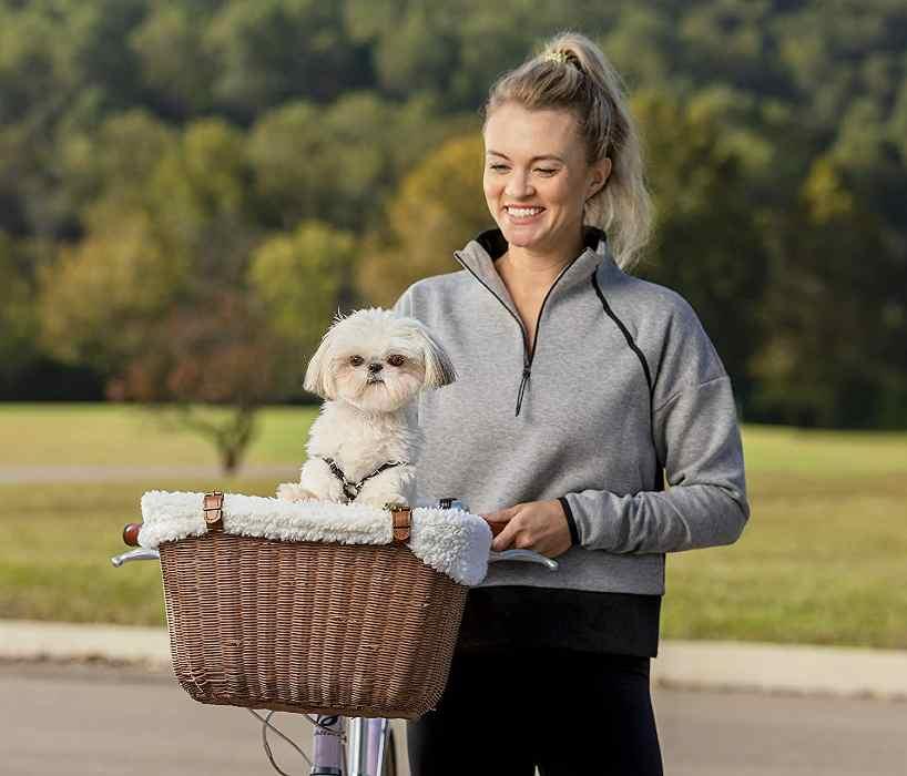 PetSafe Front Bike Basket for Dog