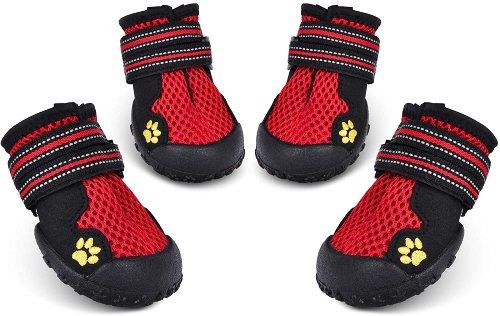 HiPaw Dog shoes for summer