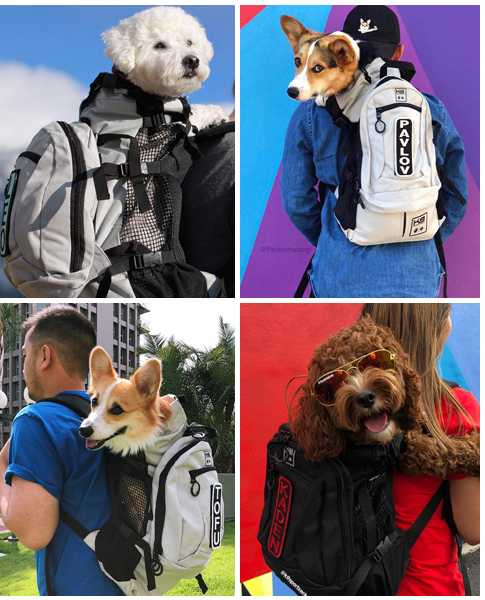large dog carrier backpack for hiking