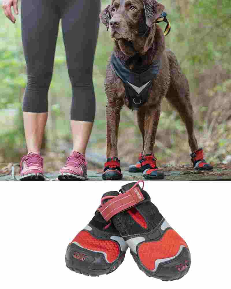 Kurgo Dog Shoes