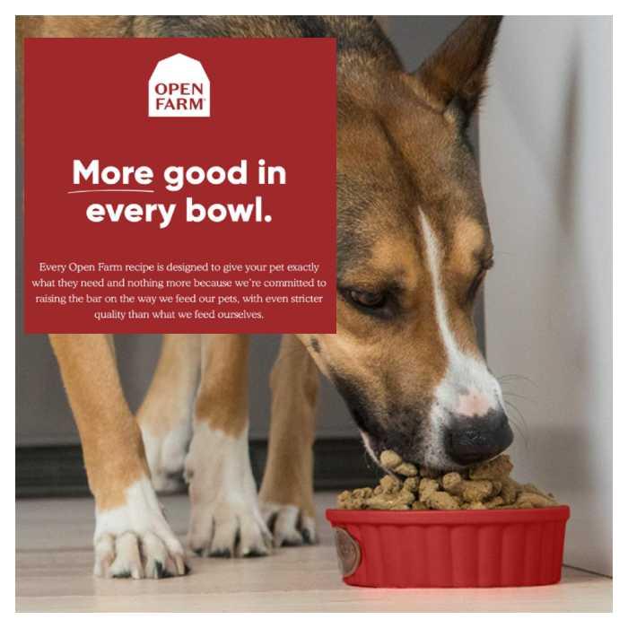 OpenFarm Freeze Dried Raw Dog Food