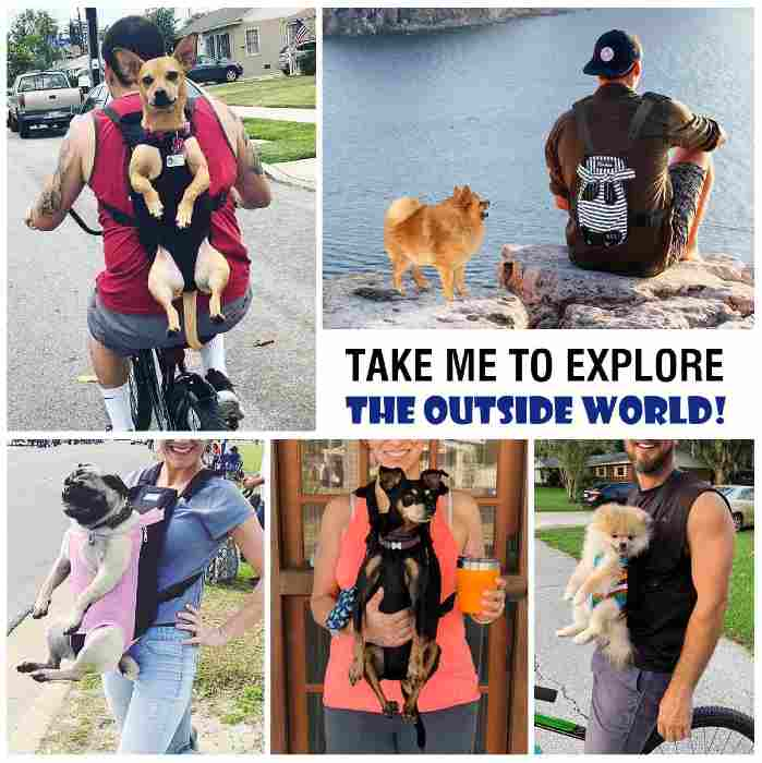 dog carrier front backpack