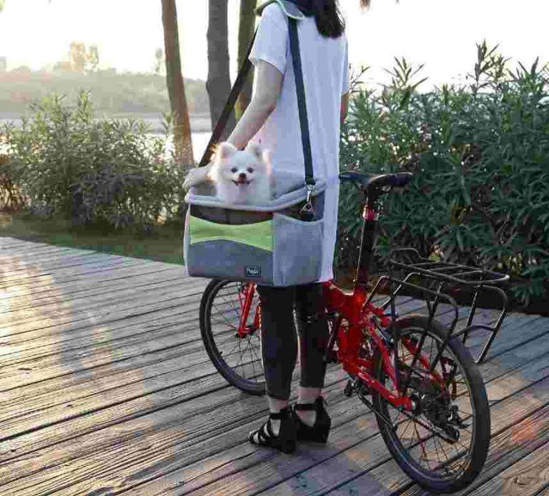 Petsfit Small Dog Carrier Bag