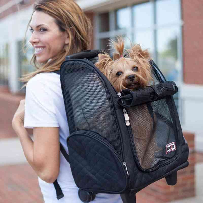 9. Snoozer Roll Around 4-in-1 Dog Carrier: Backpack, Roller Bag, Car Seat, Carry-on Bag