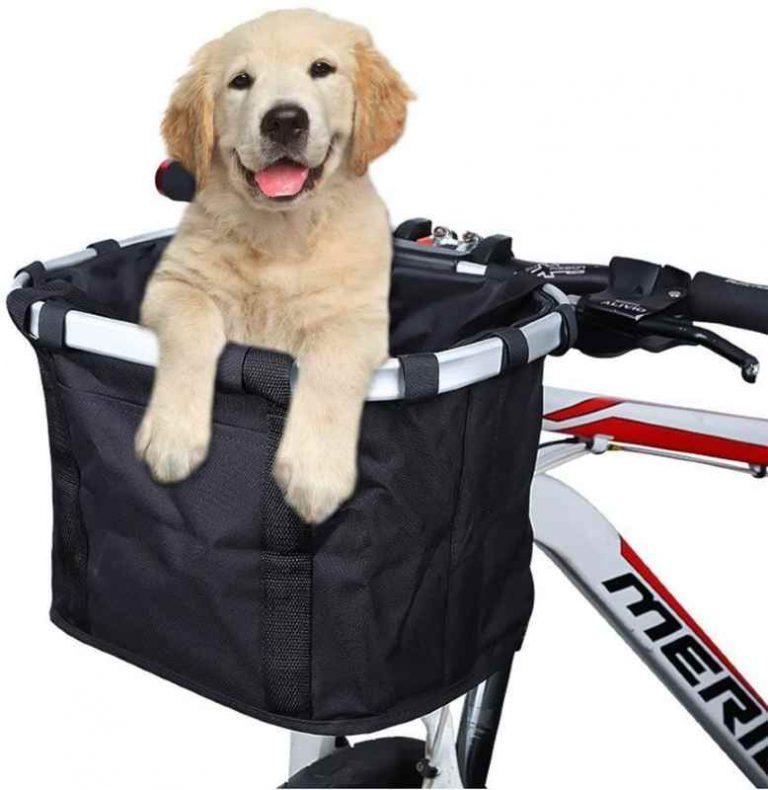 Front bike carrier for dog