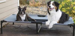 Outdoor Dog Bed banner