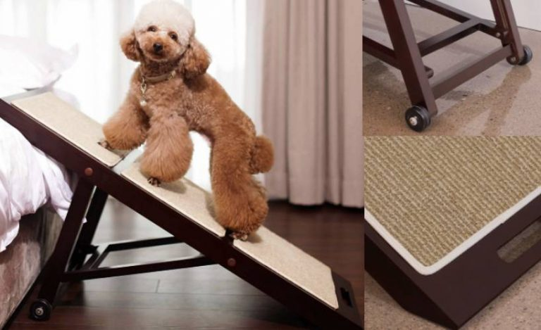 Merry Products Foldable Indoor Dog Ramp