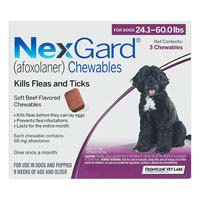 Nexgard Flea and Tick Treatment Oral Pill Chewables for Large Dog