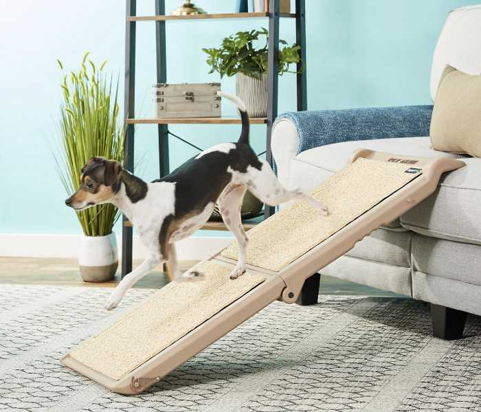 PetGear Dog Ramp For Couch Sofa