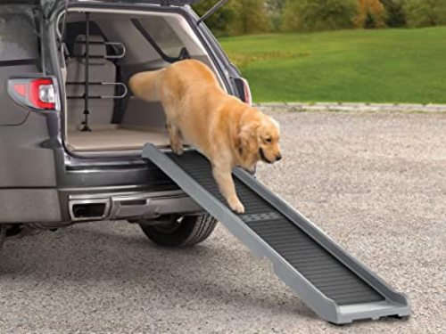 Read more about the article Dog Ramp