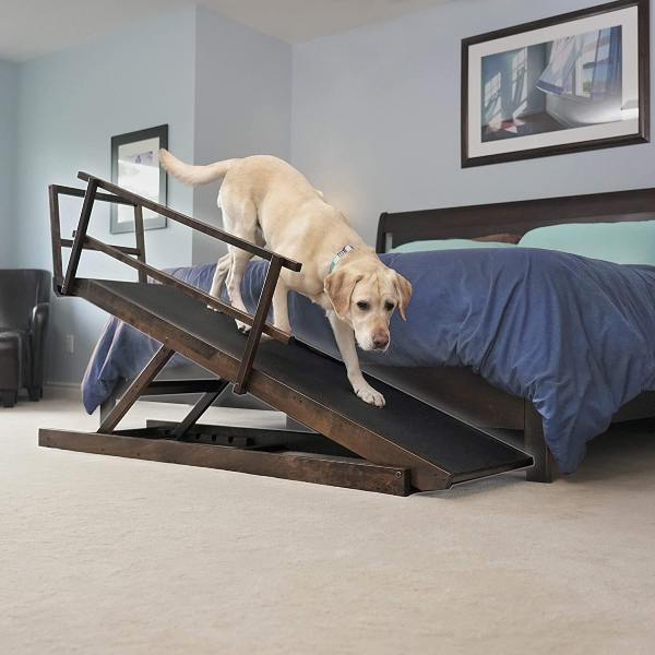 Read more about the article Dog Ramp for Bed