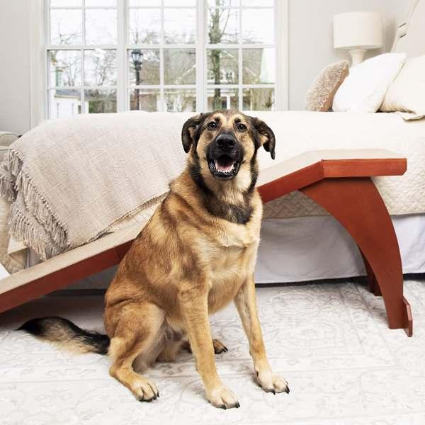Petsafe Dog Ramp for Bed