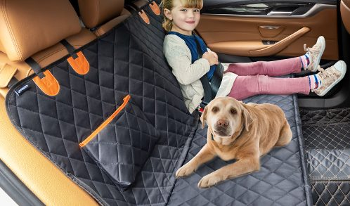 Read more about the article Dog Car Seat Covers