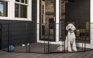 Carlson Pet Products Outdoor Extra Tall Super Wide Outdoor Dog Gate