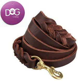 8ft leather dog leash