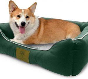 American Kennel Club Self-Heating Dog Bed