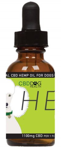 CBD Dog Health CBD Oil for dogs