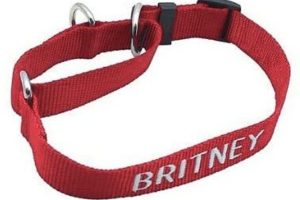 Embroidered martingale dog collar