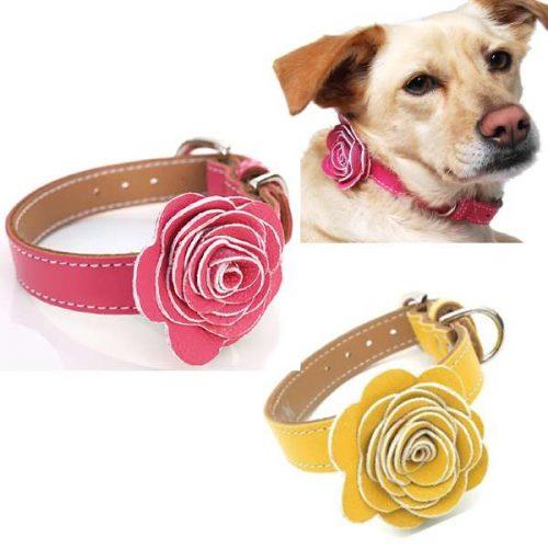 Flower Child Leather Dog Collar