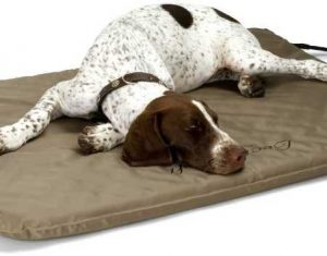 K&H Outdoor Heated Dog Bed