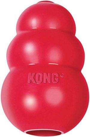 Kong Indestructible Dog Toy