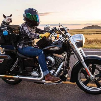 Motorcycle Dog Carrier - Kuryakyn 5288 Grand