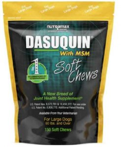Nutramax Dasuquin with MSM Dog Joint Health Soft Chews Large Dog Supplement