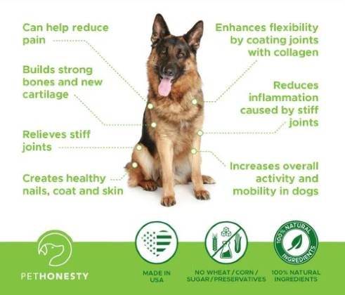 Benefits of PetHonesty HempMobility Supplement for Older Dogs