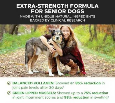 Extra Strength Formula for Senior Dogs