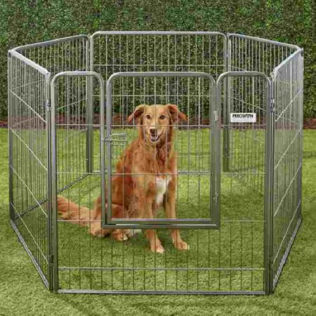 Precision Pet Products Courtyard Wire Dog Exercise Pen