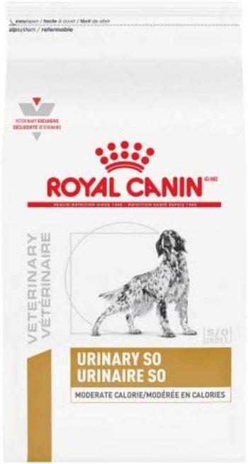 Royal Canin Urinary Dog Food