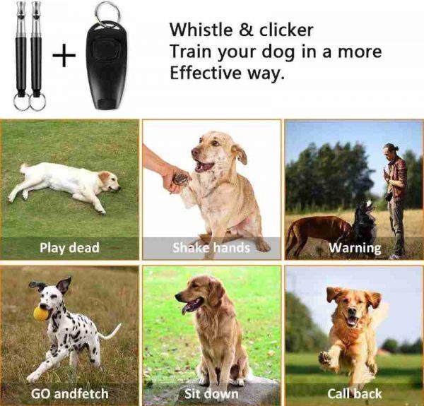 Dog Training Whistles